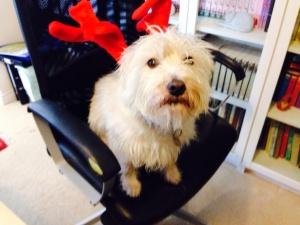 Marita's dog, Buster